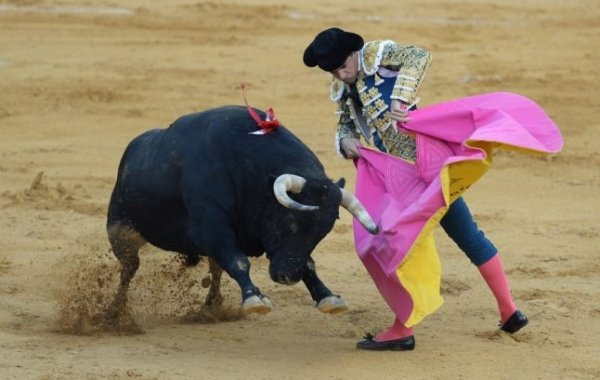 Spanish crowds to return to the bullring